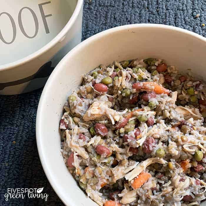 Easy and Cheap Dog Food Recipe