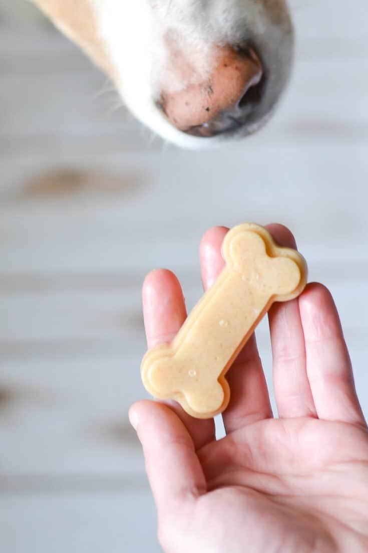 Gelatin Peanut Butter Dog Treats