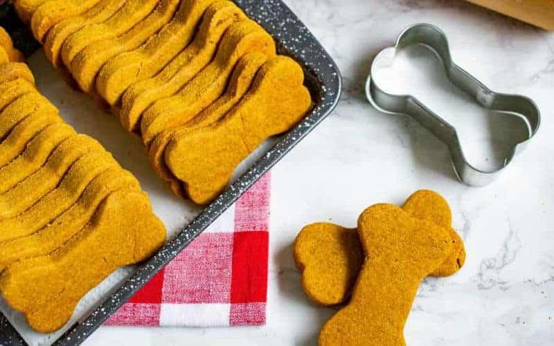 Homemade Dog Food Treats & Recipes (Vet