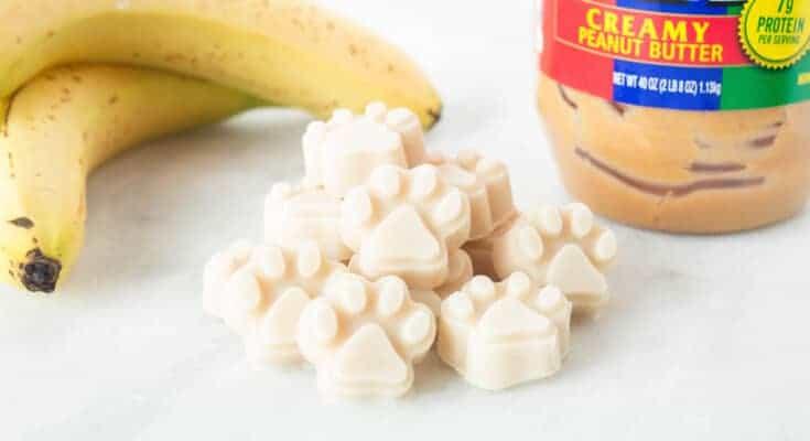 Yogurt Peanut Butter Banana Dog Treats Recipe