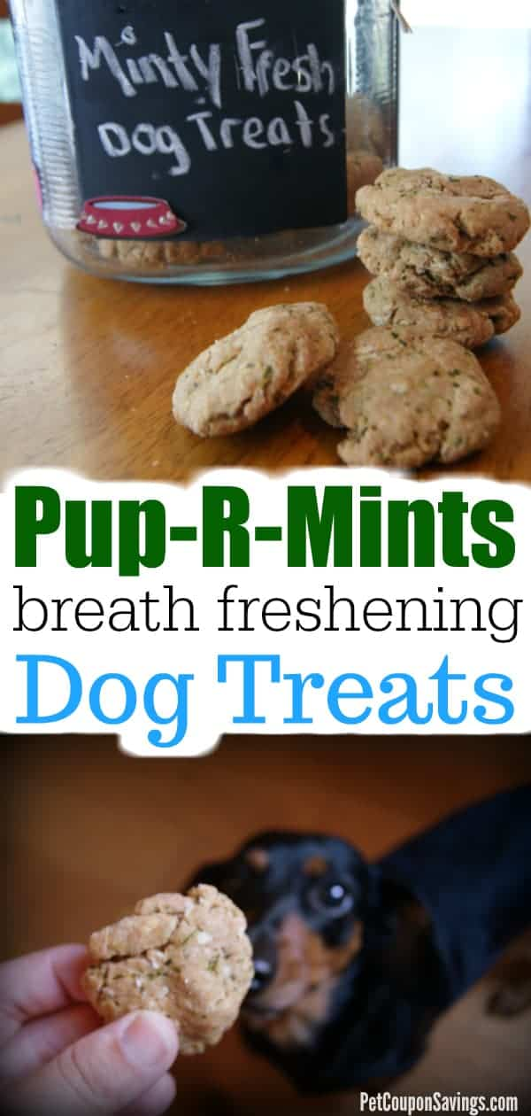Pup-R-Mints: Homemade Breath Freshening Dog Treats