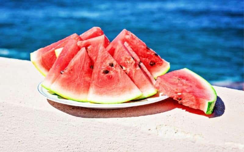 water melon beach snack idea